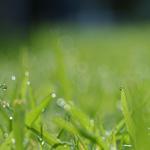 אחסון בענן – קל, פשוט ומהיר